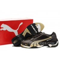 Puma BMW Sauber F1 Team Shoes BrownTanWhite Online NGPbrN