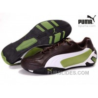 Free Shipping Puma Fluxion Shoes Brown/White/Green 903 WycfMJ