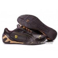 Discount Puma Ferrari Scuderia Fluxion GT Brown/Sandy/brown R8DZDe