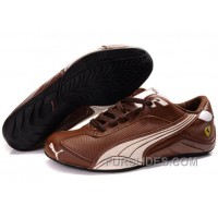Mens Puma Kimi Raikkonen In Brown/Beige Discount 5PCmG3Q