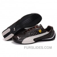 Women's Puma SF Pace Cat II In Brown-Light Pink Free Shipping YeDXe28